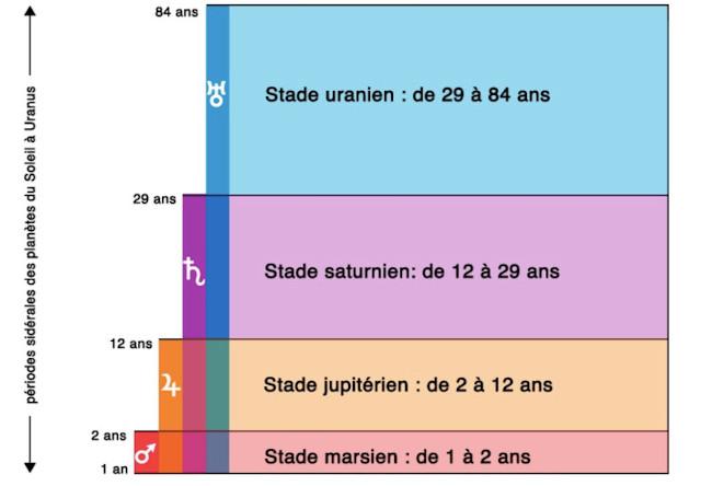 Les stades planétaires de 1 à 84 ans